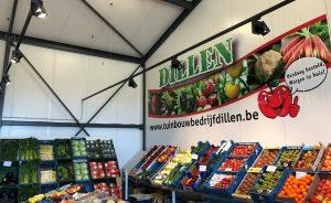 GN Light - Tuinbouwbedrijf Dillen - Berlaar